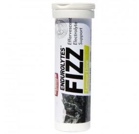 ENDUROLYTES FIZZ LEMON