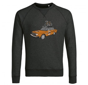 THE VANDAL - SWEATER - MOLTENI TEAM CAR